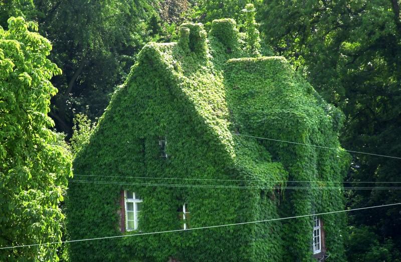 """""""was hat ein Gärtner zu reisen"""" - Goethe und der ..."""