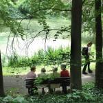 Botanischer Garten_Teich