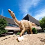 Dino Ausstellung 2010 – Iguanodon